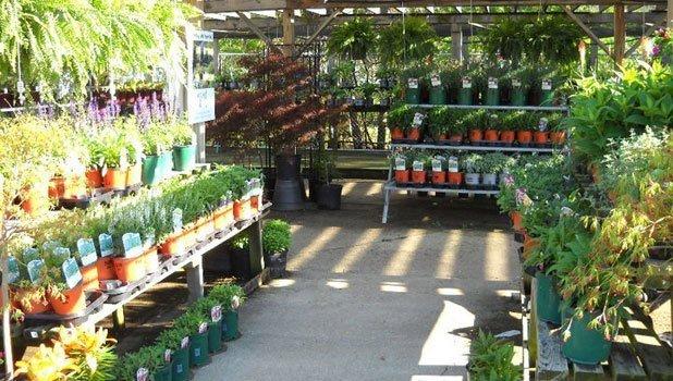Garden Gift Shops Cedar Lake Gardens Gifts